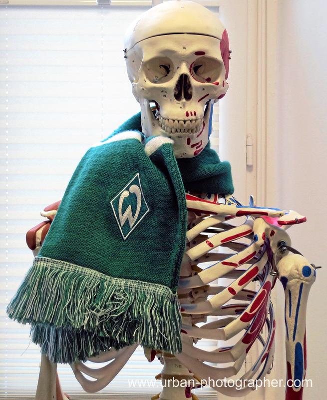 Werder Bremen Fan