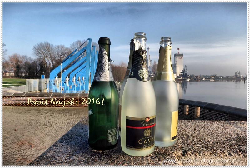 Prosit Neujahr 2016 !
