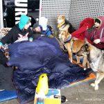 Obdachlosigkeit und Elbphilharmonie Hamburg